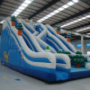 Large Inflatable Slide for Play Outdoor