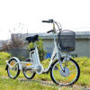 Cheap Price 3 Wheel Electric Tricycle From China