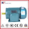 Three-Phase Induction Electrical AC Motor with Factory Price
