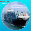 Solar Panel Kits Popular LCL Sea Freight From China