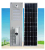 15W-60W All in One/ Integrated Solar Street Light/ Lamp/ Lighting