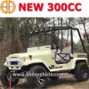 Longer Style 300cc Go Kart/300cc UTV/High Configuration 2 Seats Willys (MC-433)