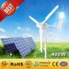 off Grid Hybrid Solar Wind Power System (400W)
