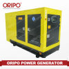 Professional Manufacturer 100kw Portable Diesel Generator with Ce & ISO