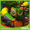 Small Jungle Themed Indoor Playground Equipment Imported From China
