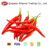2017 New Crop Frozen Chili with High Quality