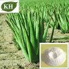 High Quality Aloe Vera Powder 85507-69-3