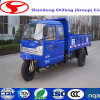 150cc Tricycle/Adult Tricycle/Cargo Tricycle/Cargo Trike/China Tricycle Truck/Drift Trike/Gasoline Tricycle Car/Motor Tricycle Car/Motor Tricycle Rickshaw