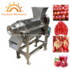 Commercial Industrial Juicer Machine Pomegranate