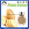 Hot Sale Potato Extract/Protein 80%/Lower Blood Sugar Plant Extract
