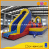 Outdoor Slide Inflatable Big Ball Sports Game for Adults and Kids (AQ16281)