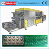 Fully Automatic Plastic Clamshell Forming Machine