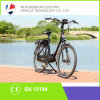 New Sale 700c 36V 250W Middle Drive Electric Bike