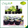 Onlylife Widely Used Felt Vegetable Grow Bag No Handle
