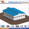 Low Cost Prefabricated Light Steel Structure Factory Project Building for Sale