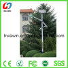 CE Certficated Solar Street Light (HW-SL61)