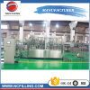 2000bph Plastic Pet Bottle Pure Water Rinsing Filling Capping Machine