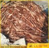 6 Sq mm Copper Wire Scrap Copper Cable with Big Quantity Inventory