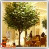 Indoor Decoration Plastic Leavs Artificial Bnyan Tree