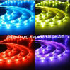 Yellow/ Red / Blue/ Purple LED Strip 14.4W Per Meter IP65 IP68