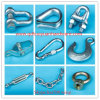 European Type D Sharp Lifting Shackle for Marine Hardware