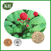 100% Natural Ginseng Root Extract/Ginseng Extract CAS No.: 90045-38-8