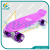 Retro Cruiser Penny Board 22′′ Skateboard From Factory