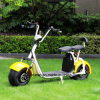 2 Wheel Fat Tire Electric Scooter 1500W Citycoco with Removable Battery