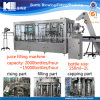 Juice Bottle Packing Machine / Equipment / Plant
