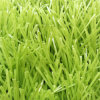 Medium Class 50mm 9500 Dtex S Shape Football Artificial Grass Turf