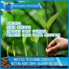 Modified Trisiloxane Ethoxylate Wetting Agent/Spray Adjuvant (WET-608)