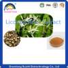 100% Natural Organic Licorice Root Extract/Licorice Oil