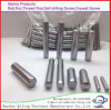 Stainless Steel Parallel Pins with Female Thread Ss 304 316 Straight Pins