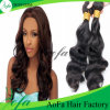 100% Unprocessed Virgin Hair Body Wave Brazilian Human Hair Extension