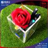 Clear Square Acrylic Pencil Box