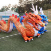 Ca908 Good Quality Advertising Inflatable Dragon Cartoon for Dragon Boat Festival