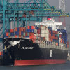 Shipping Logistics Company in Foshan