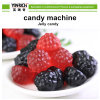 Candy Maker Candy Processing Line Fully Automatic Gummy/Jelly (QQ) Candy Depositing Line (GDQ300/450-3)