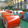 Hot Dipped Gavanized Steel Coils Ral Colors Zink Coating PPGI