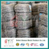 Galvanized Safety Barbed Wire/Barbed Wire Fencing/Barbed Wire Coil
