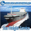 Shipping Agent (20gp/40gp/40hq) From China to Germany, Sea Cargo (LCL, FCL) , Logistics Service