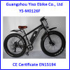 Electric Fat Tire Bike with 750W Front Motor