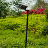 Solar Garden Light/Lawn Lamp with High-Grade Silicon Solar Panel