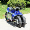 Trumki 2018 150cc Gas Electric Motorcycle Racing Vehicle Dodge Tomahawk Concept Vehicle