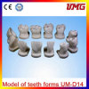 Tooth Model with Model of Teeth Forms