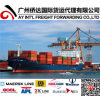 China Freight Agent From Guangzhou to Senegal