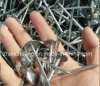Galvanized Smooth Shank Umbrella Head Roofing Nail