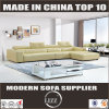 High Quality Top Grain Leather Sofa (Lz1005)