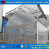Single Span Agricultural Plastic Film Greenhouse for Mushrooms