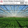 Agriculture Multi Span Steel Structure Green House/Glasshouse for Vegetables